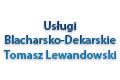 Usługi Blacharsko-Dekarskie Tomasz Lewandowski